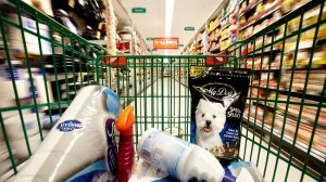 224422-shopping-trolley-in-a-supermarket